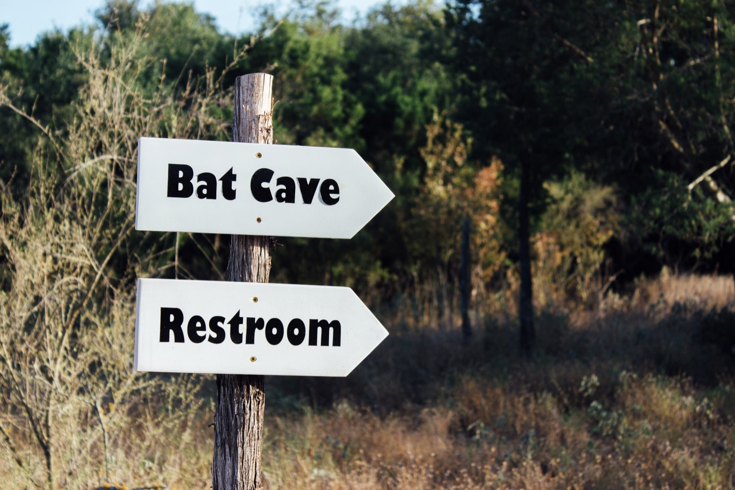 a sign in the wilderness that has two arrows, one that says 'bat cave' the other that says 'restroom'