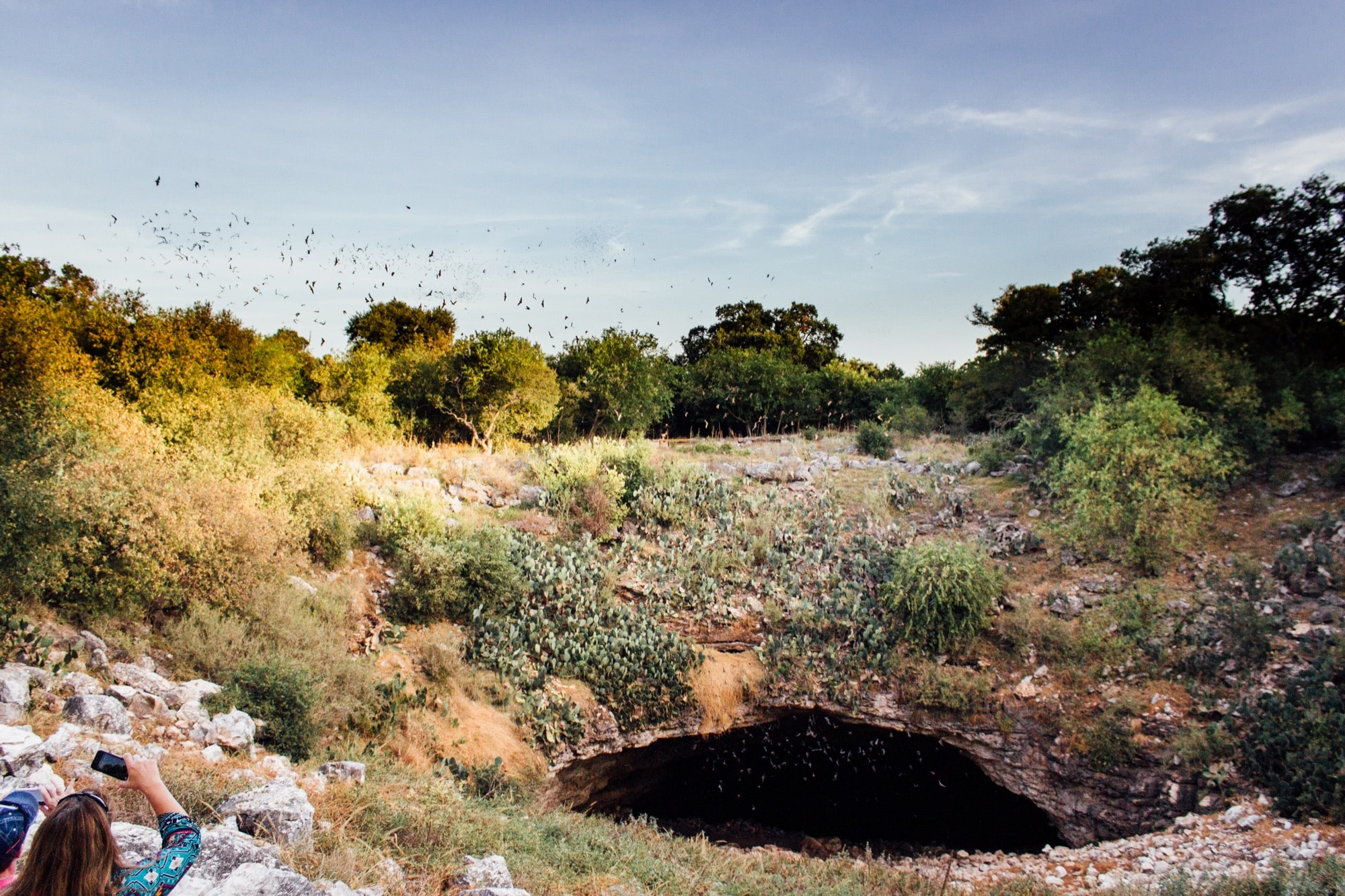 a landscape, including a cave, with bats flying out of it