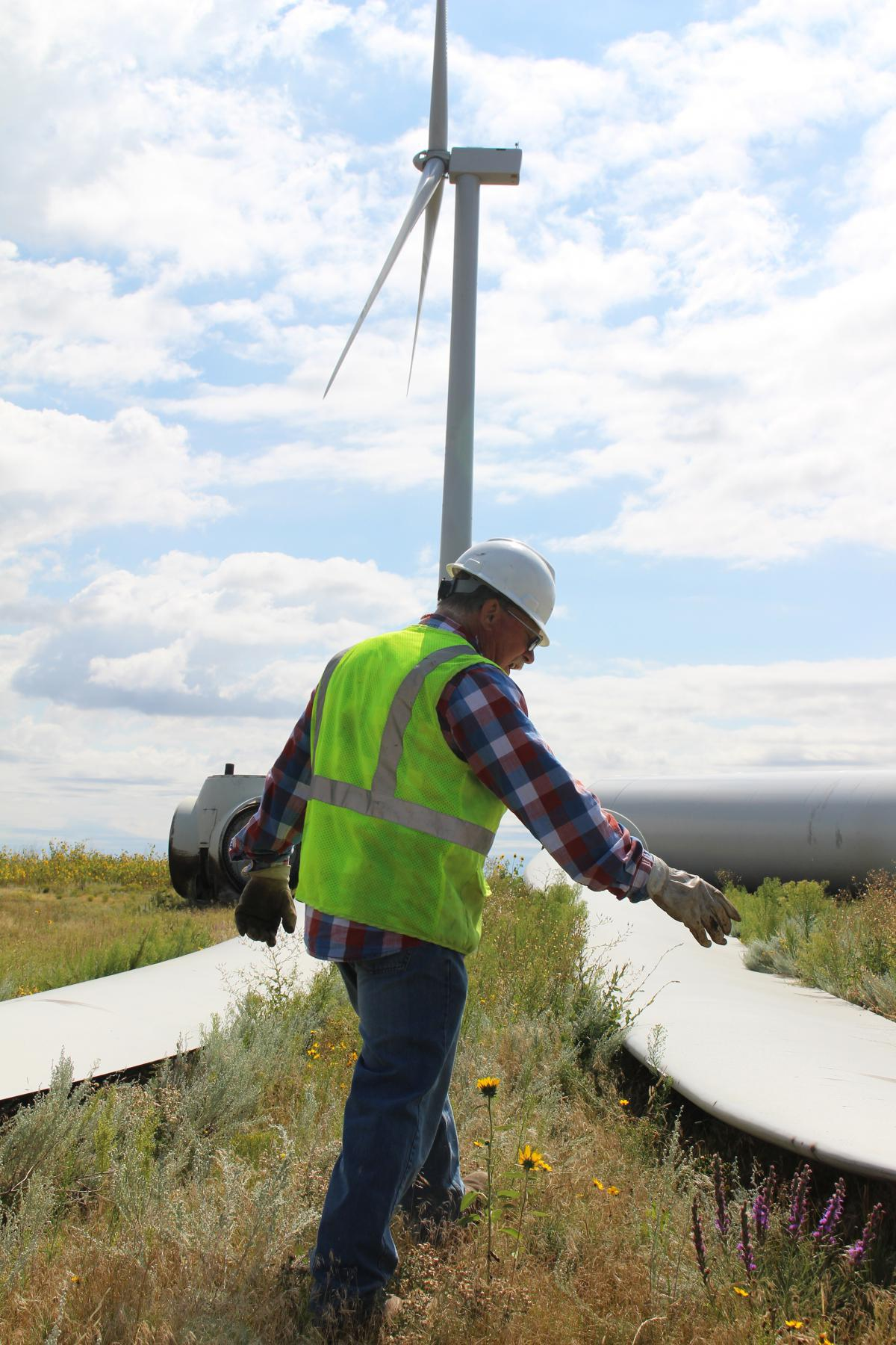 a worked in a safety vest and a hard hat walks between blades on the ground with a functioning wind tower in the background
