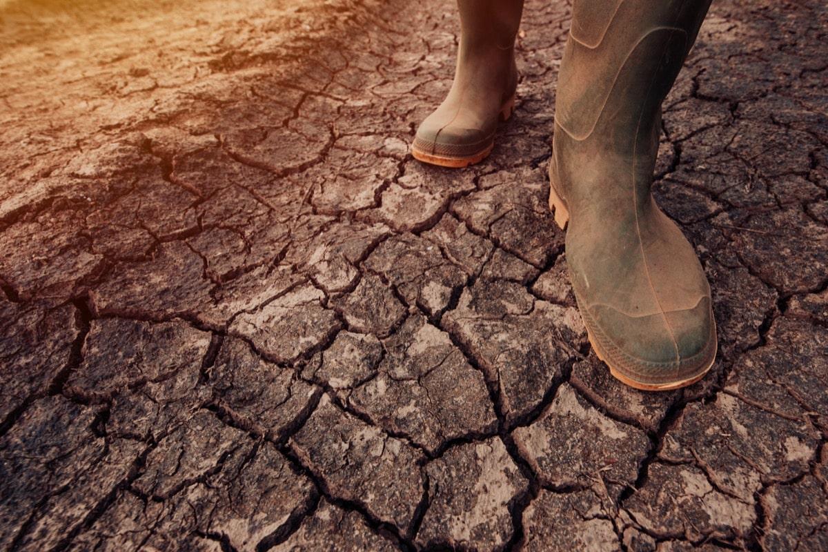 Farmer walking on dry soil