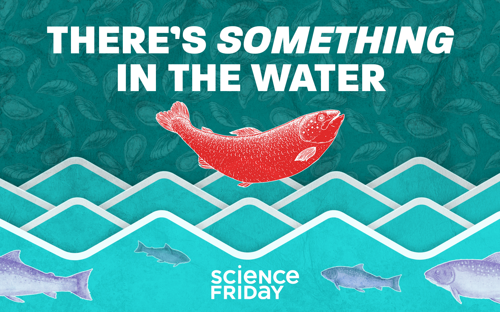 illustrated scene of fish in water and mussels in the background. in the center is a bright red salmon, with the words 'there's something in the water' and the logo reading 'science friday'