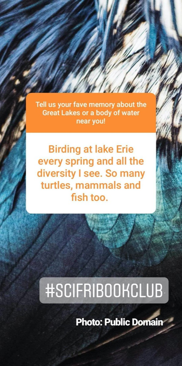 a screenshot of an instagram story. comment reads: birding at lake erie every spring and all the diversity i see. so many turtles, mammals, and fish too