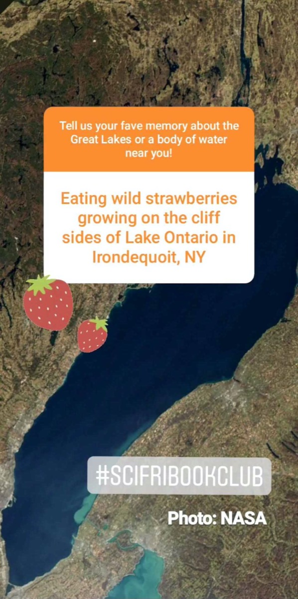 "a screenshot of an instagram story of a favorite memory from the great lakes. the comment reads ""eating wild strawberries growing on the cliff sides of lake ontario in irondequoit, new york."""