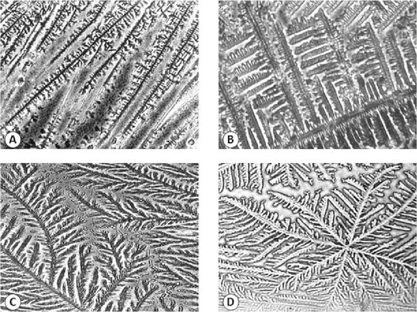 four different images from under a microscope. each show a different crystallization pattern.