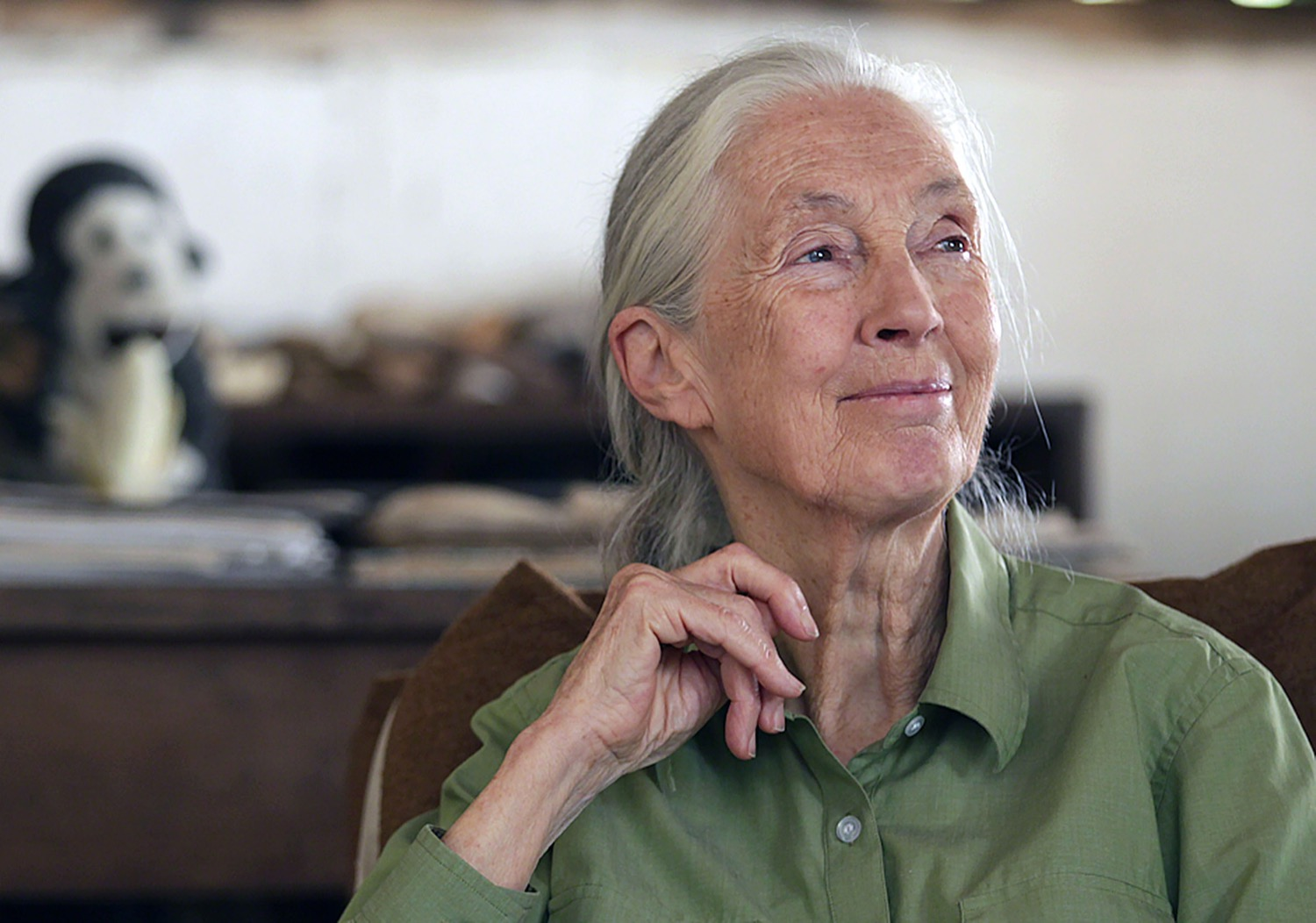 jane goodall stares wistfully into the distance, smiling warmly