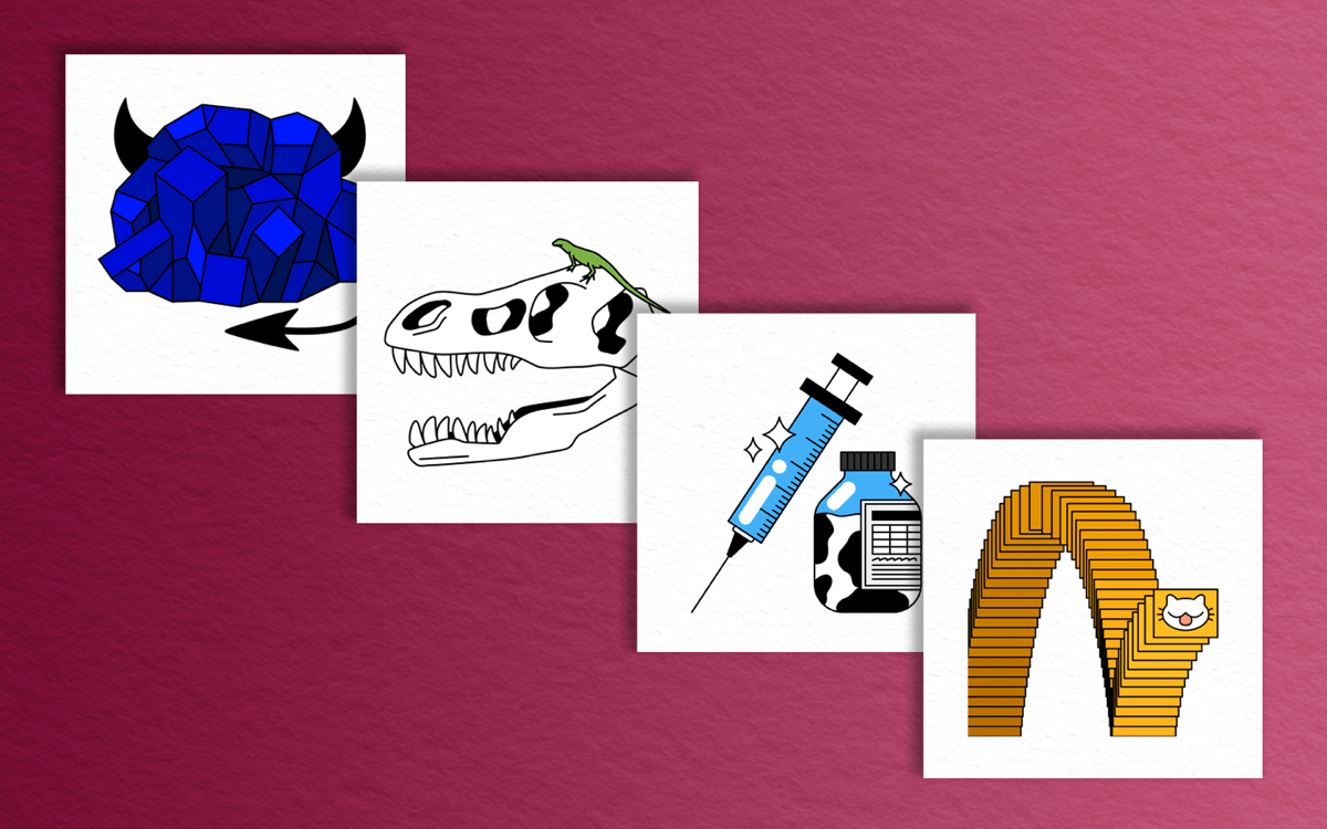 four illustrations tiled on a red background. from left to right, an illustration of a blue rock with devil horns and a tail, a t rex skull with a lizard on top, a syringe with a small medical vial that is cow printed, and replicating square featuring a cartoon cat face