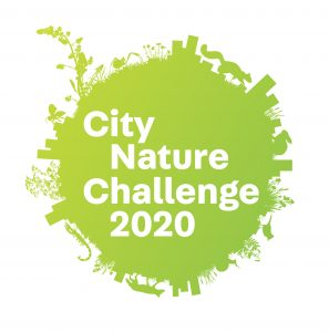 """a logo of a green circle with little bits of leaves and nature on the edges. it reads """"city nature challenge 2020"""""""