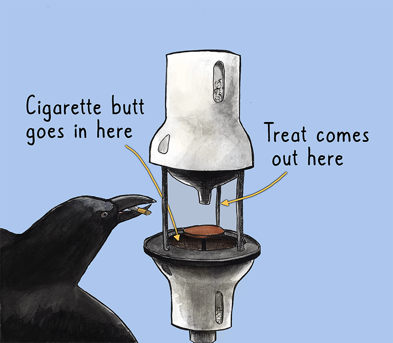 Illustration of the CROWBAR device where a crow puts a cigarette butt into a round device that then dispenses a treat.