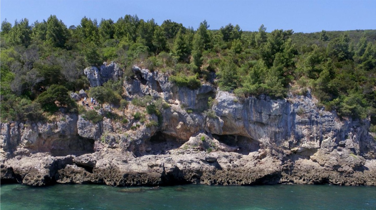 a tree covered cliffside that ends into the ocean. on the side of the cliff you can see three distinct cave entrances