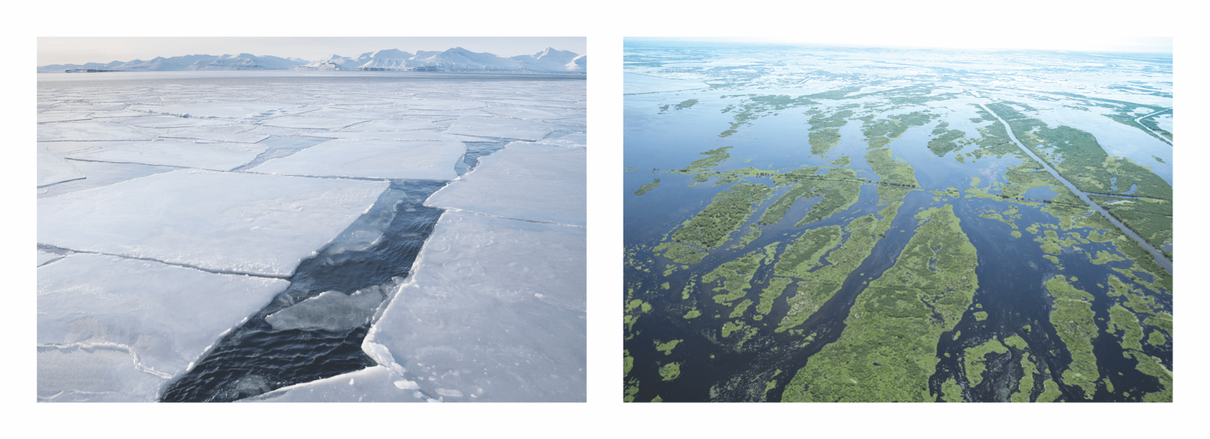 two images, one of giant ice sheets splitting apart and flooded Louisiana wetlands