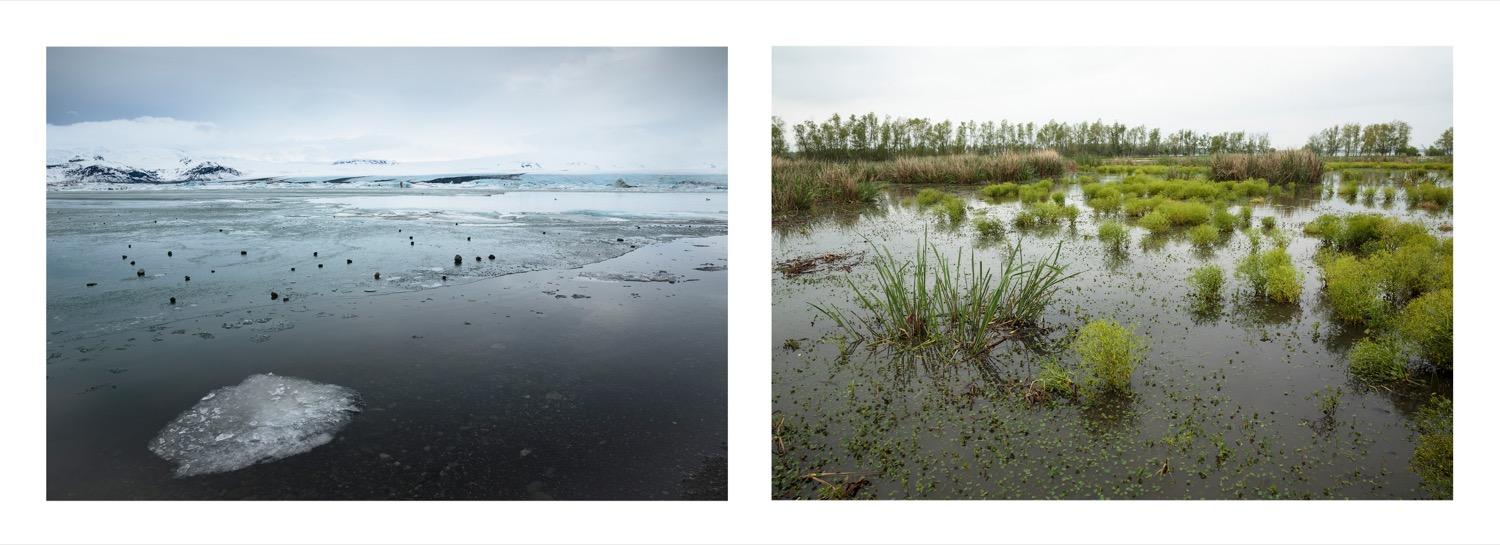 two images, one of giant ice sheets melting and splitting apart and flooded Louisiana wetlands