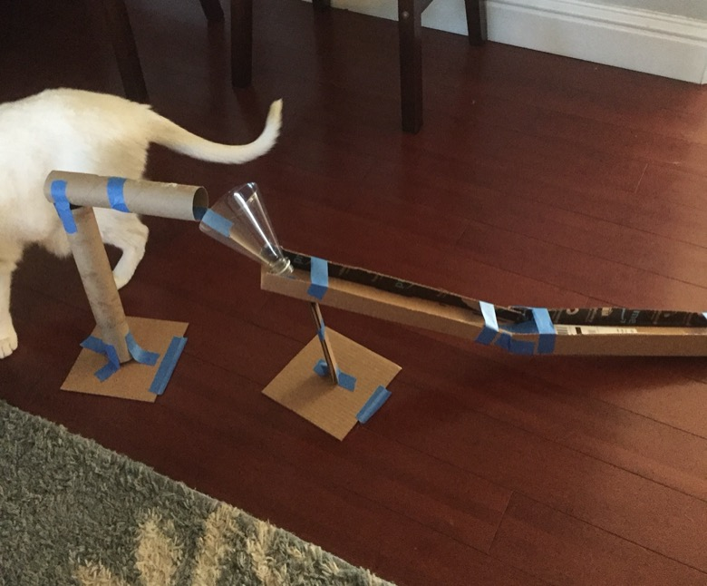 A roller coaster made from tape, cardboard, and other materials assembled on a floor near a dog