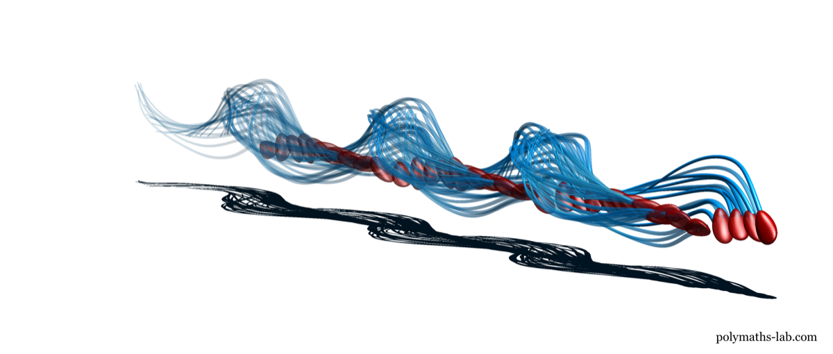 a 3d model of a sperm showing a trail of its corkscrew, spiral movement