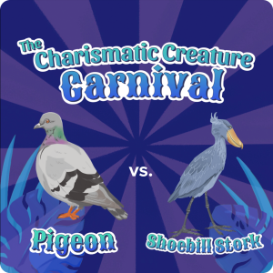 """on a purple striped background reminiscent of a striped circus tent seen from above sit two creatures, pigeon and shoebill stork, with the title """"the charismatic creature corner"""" above them in whimsical, carnival font"""