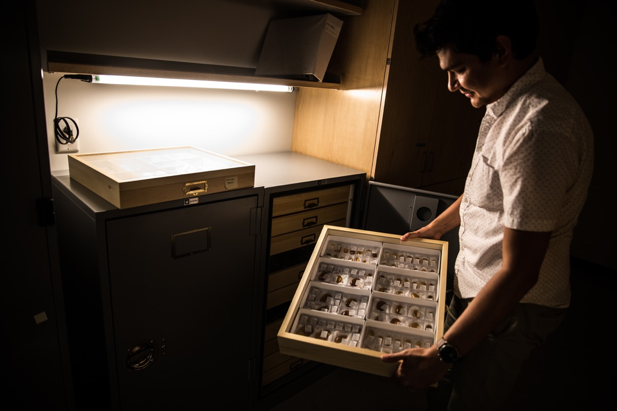 a man holding a collection of various specimens in a box