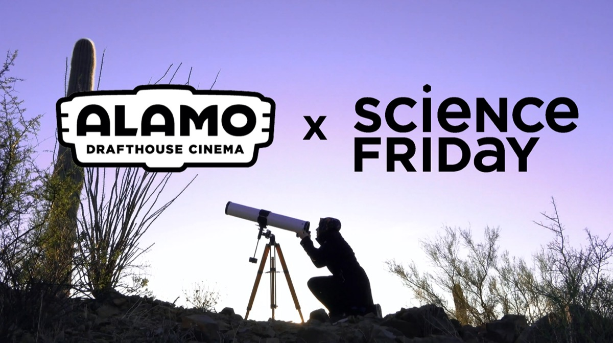 "a purple poster of a woman looking through a telescope outside, with the logo of ""alamo drafthouse"" and ""science friday"" above her"