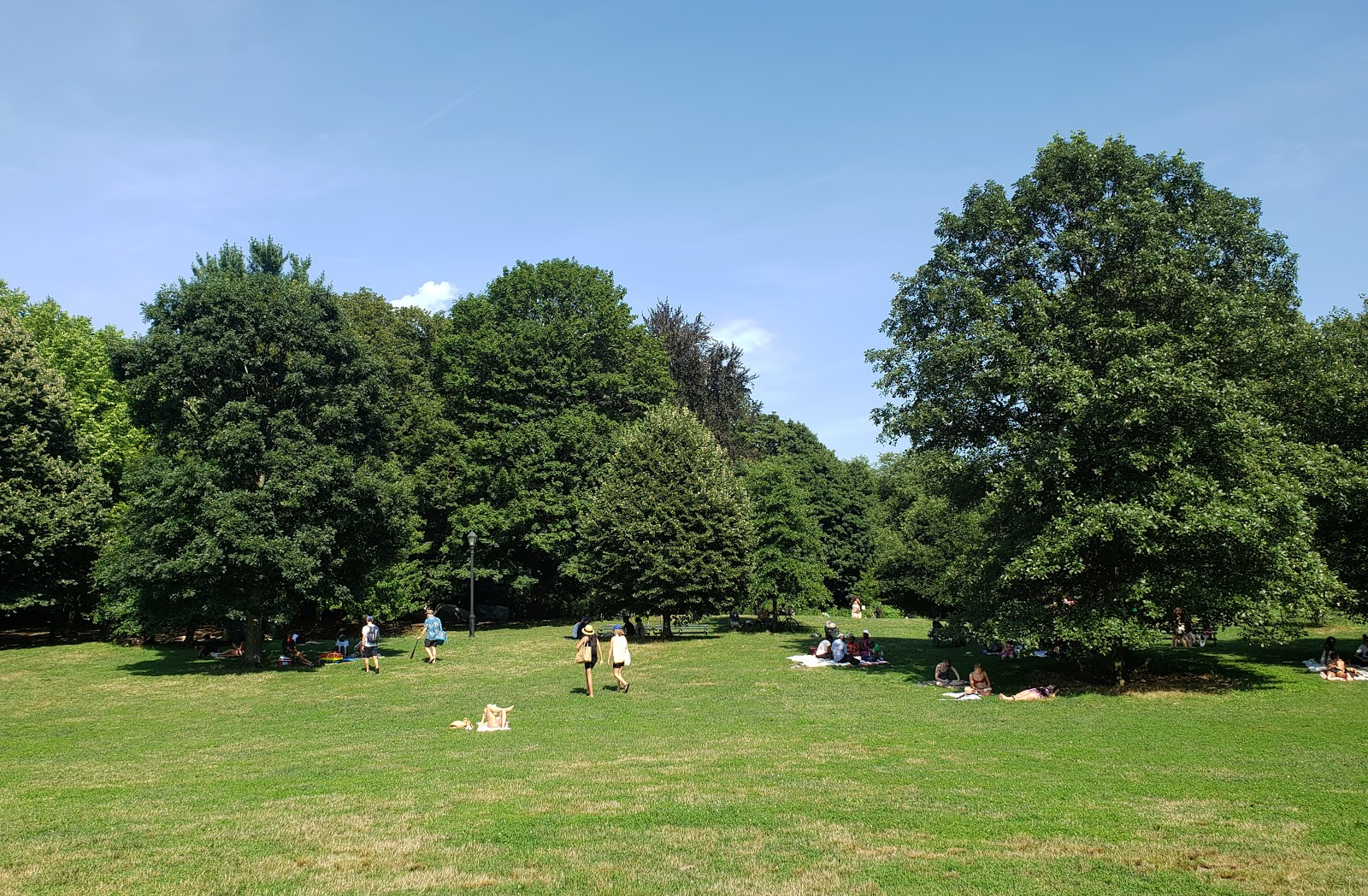 a green open space with trees and people on blankets
