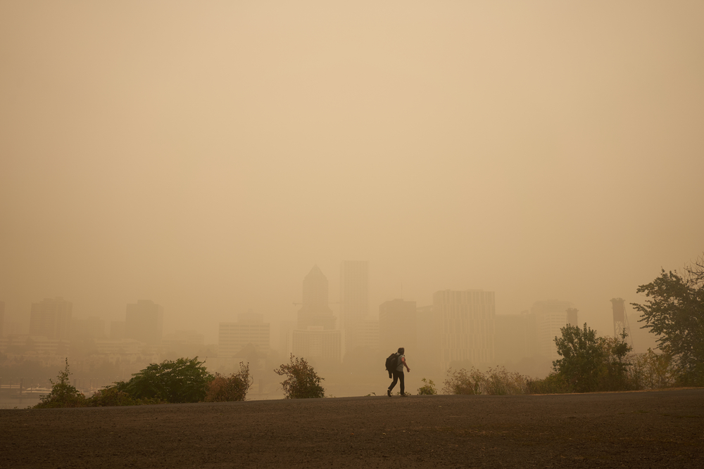 a lone person walks, with smoke and haze shrouded city behind them