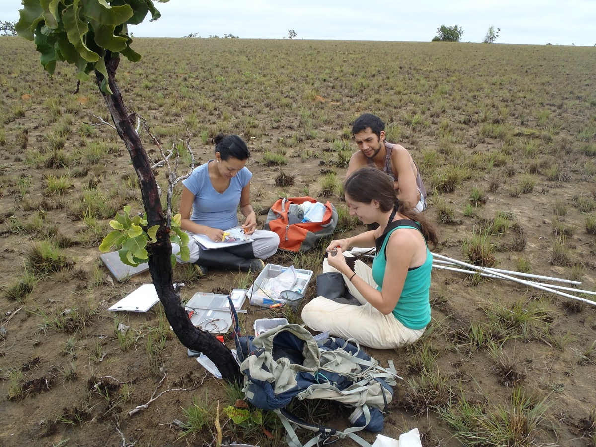 three researchers sit out in a field with paper work and equipment to tag birds