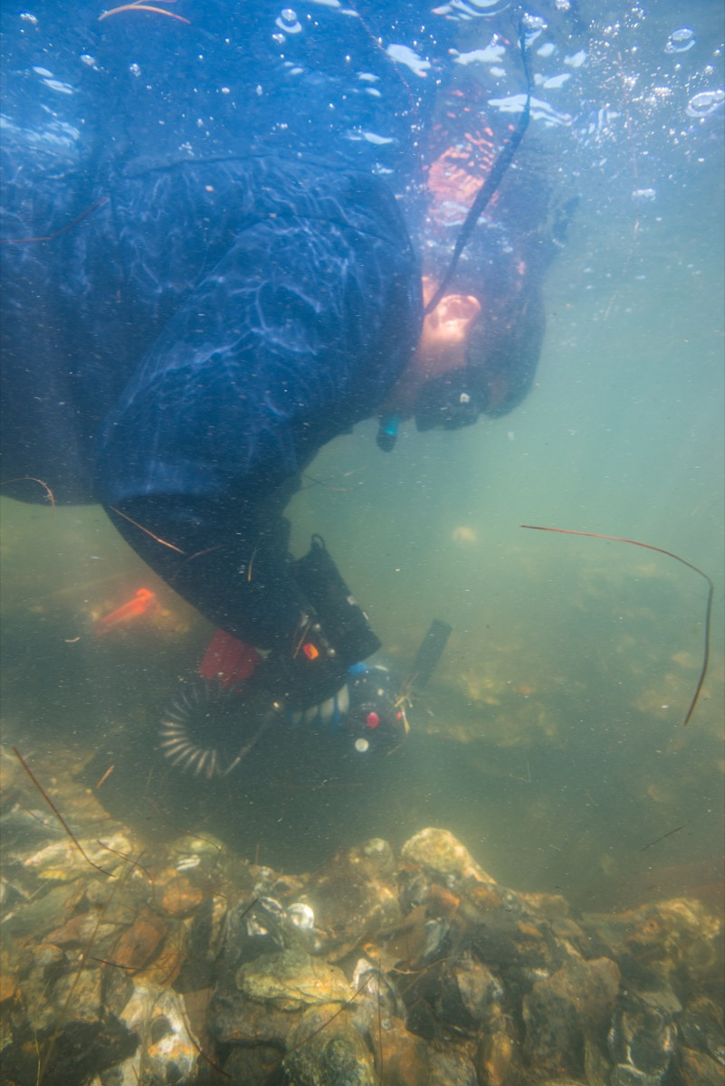 a scientist using a drill underwater on a shipwreck