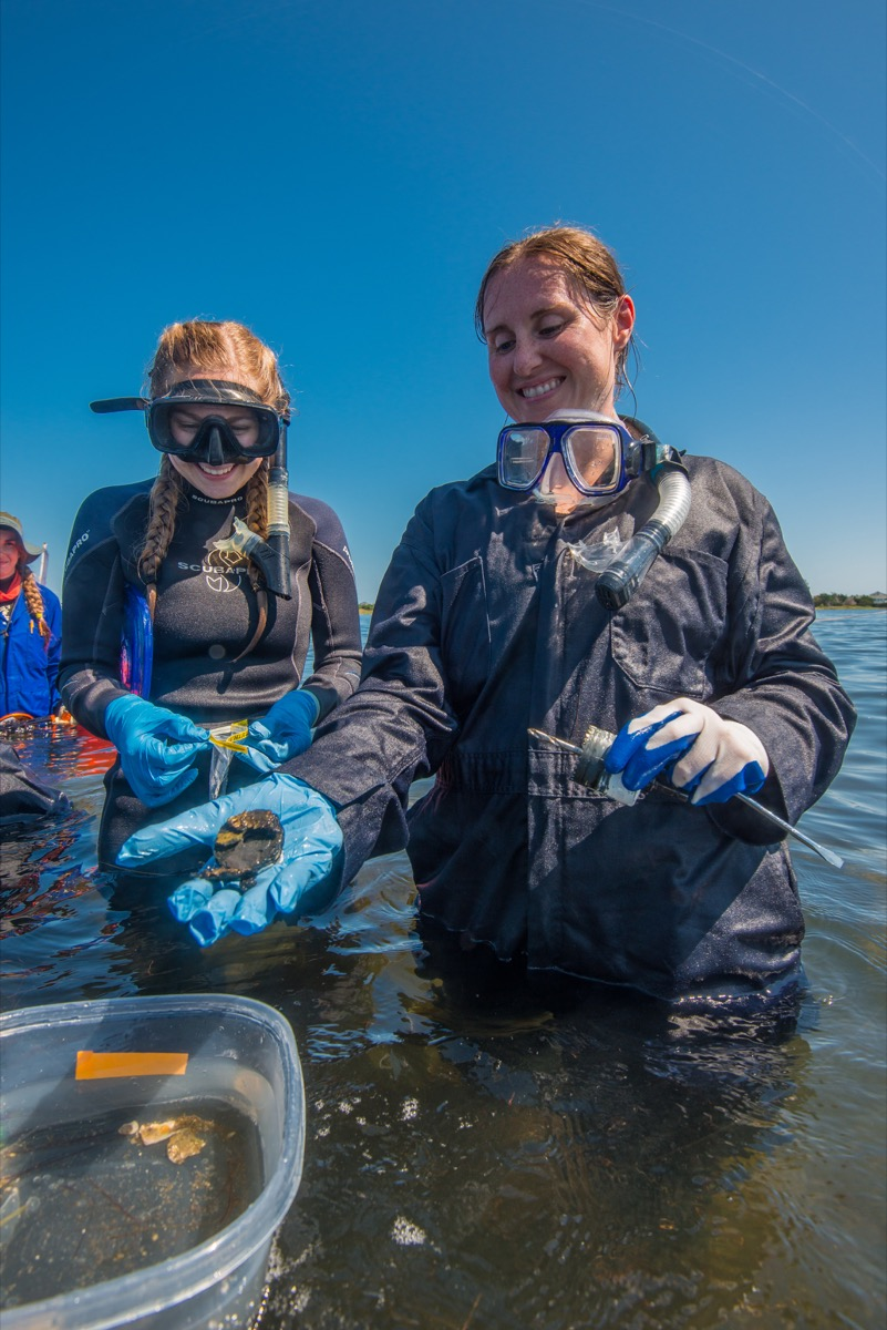 two women scientists in wet suits and gloves in a lagoon handling samples from a shipwreck