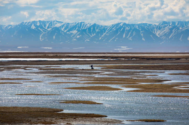 a coastal plain with snowcapped mountains in the background.