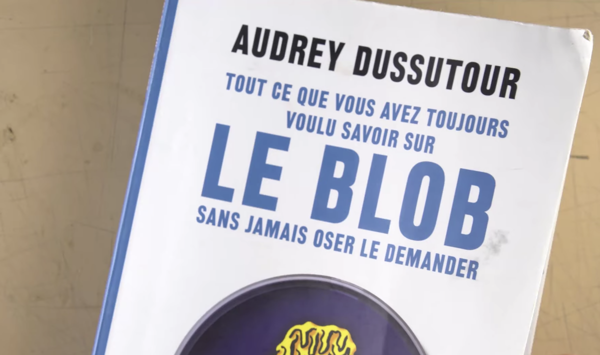 "a book cover that reads ""le blob"" by audrey dussutour"