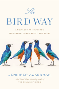 """a book cover that reads """"the bird way."""" it has five blue and orange birds"""