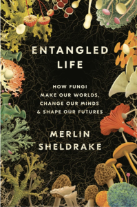 """a book cover that reads """"Entangled Life: How Fungi Make Our Worlds, Change Our Minds & Shape Our Futures."""" the book cover is black and around it is a border of colorful illustrations of fungi—various species of different shapes and colors"""