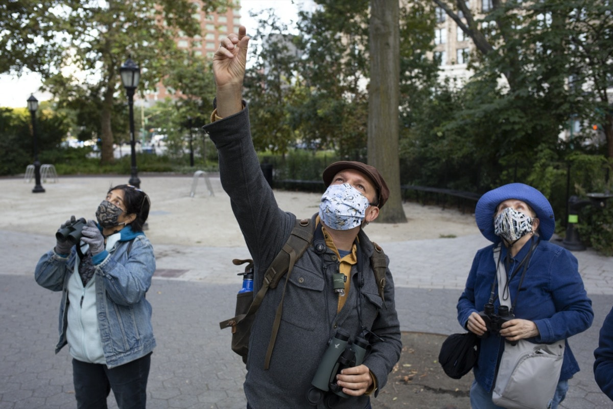 a man in a newspaper boy cap and wearing a facemask points up at birds. next to him are two women with face masks also looking up at birds through binoculars