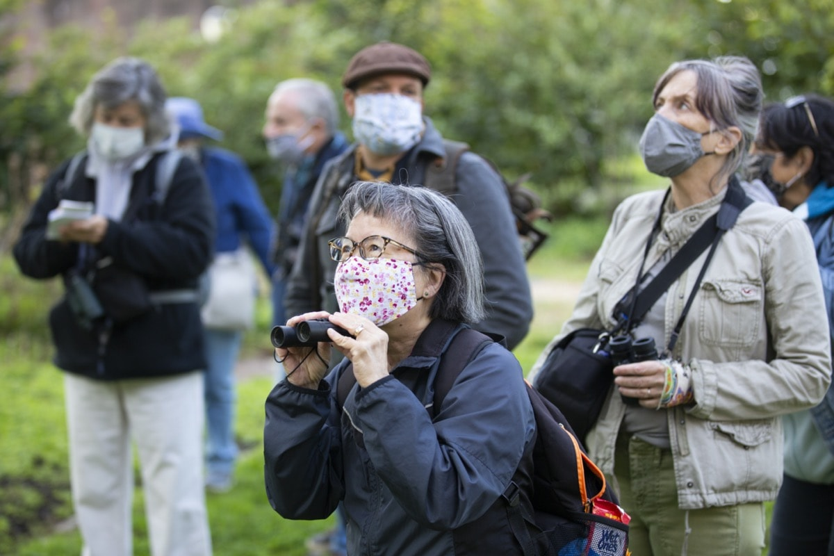 a woman with pepper hair and glasses and wearing a face mask, crouches a little as she looks through binoculars at birds in a park. behind her are a group of fellow birders holding binoculars and wearing face masks
