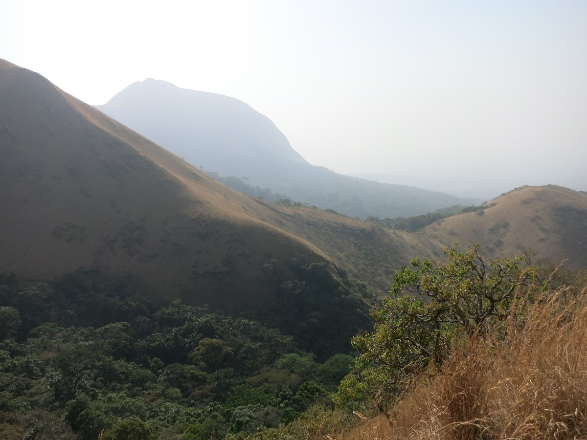 a mountainous lush landscape with some mist in the background
