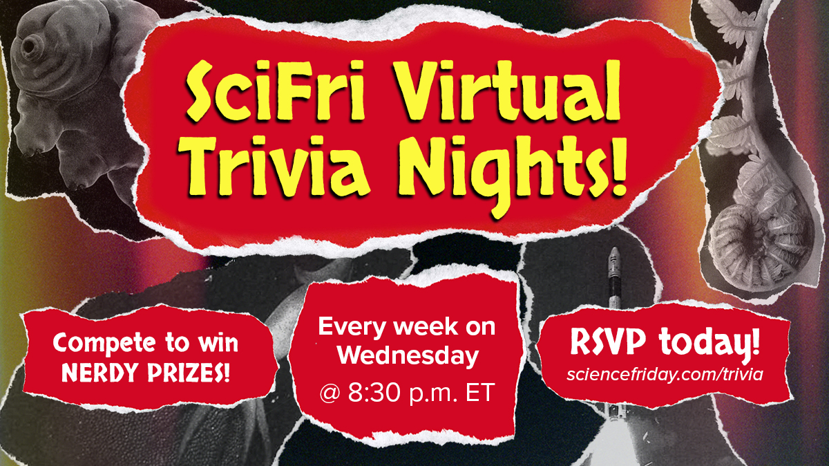 collage style poster that says 'scifri virtual trivia nights, every week on Wednesday at 8:30pm ET' with multicolored texture in the background and torn paper images of a plant, tardigrade, rocket launching, and squid