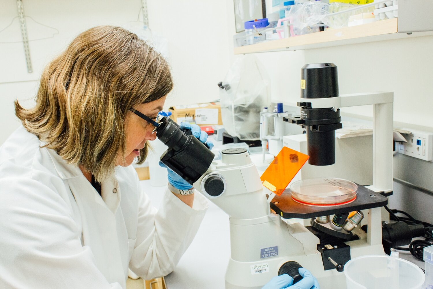 a woman in a lab coat and gloves looks through a microscope in a lab