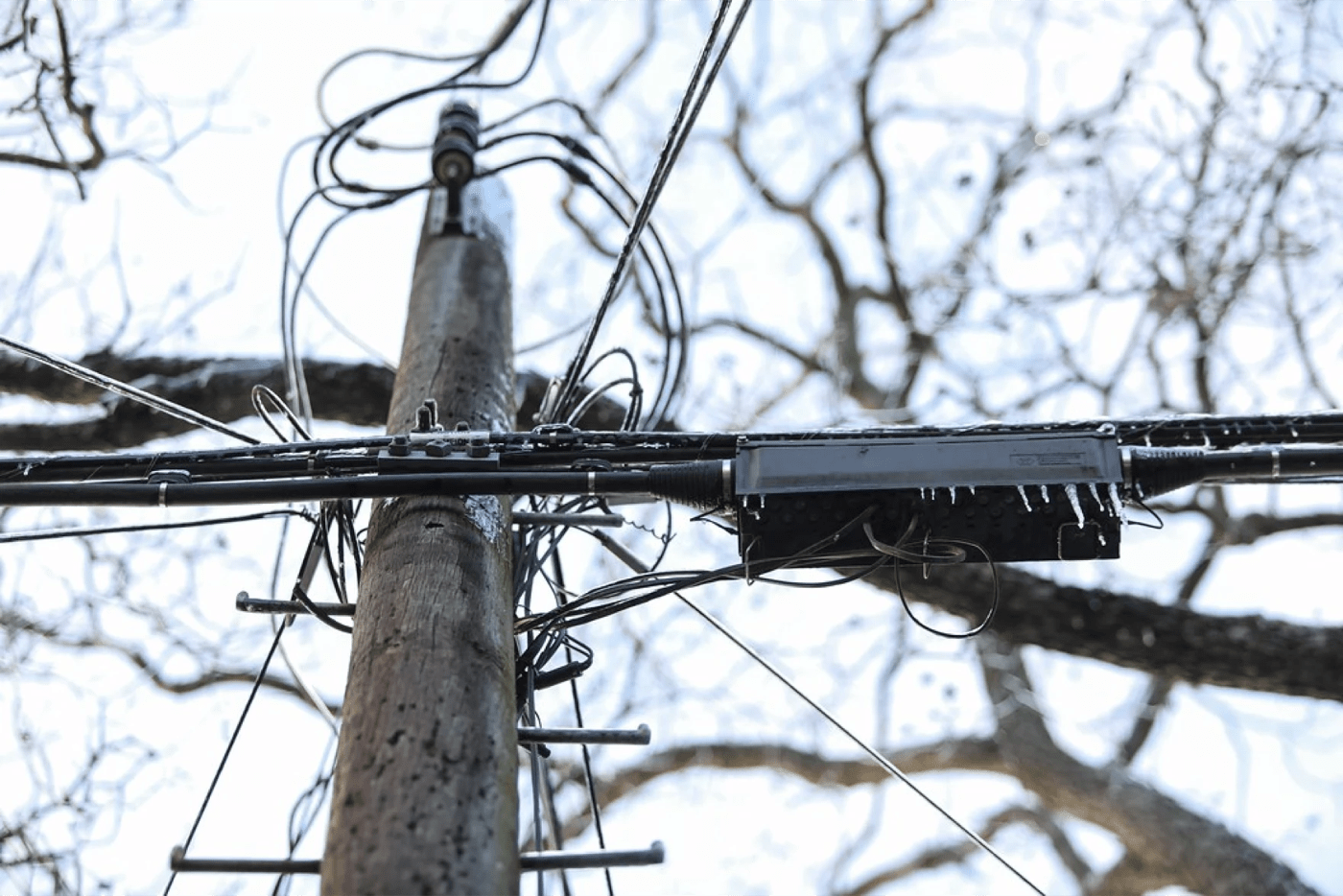 looking up at ice-covered power lines with bare trees in the background