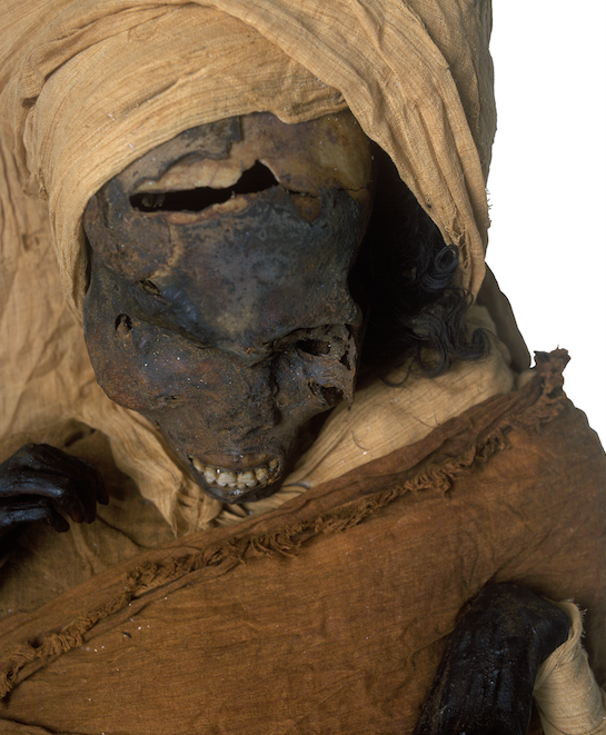 a mummy partially unwrapped from the cloth around it, with the black skull partially visible. there is a massive tear/hole on top of the skull