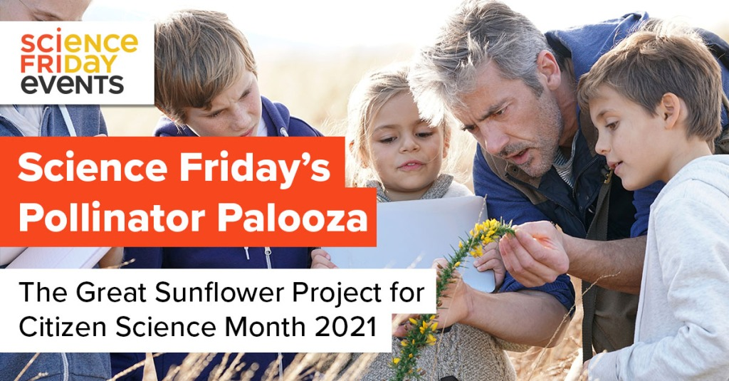 """a middle aged man holds a yellow desert flower for a group of young children, who all inspect the flower closely; over the image reads the words """"science friday's pollinator palooza, the great sunflower project for citizen science month"""""""