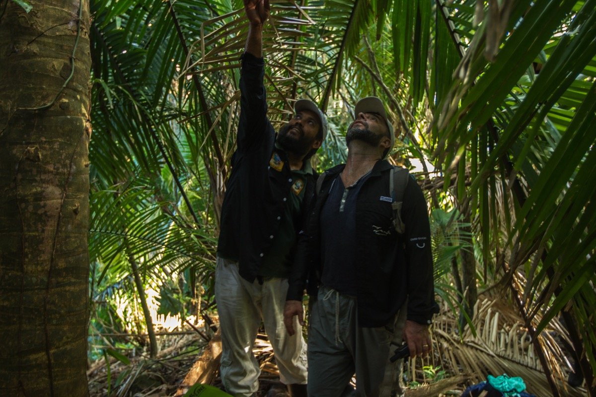 two male researchers wearing hiking gear in a jungle environment