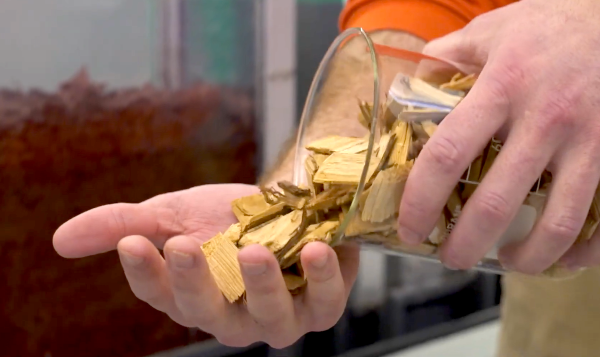 a person pouring our woodchips from a measuring glass