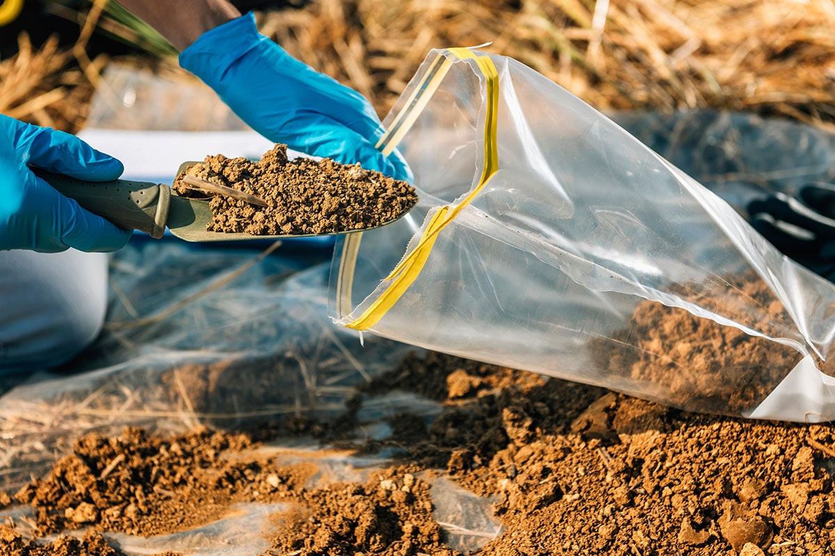 Photo of hands with nitrile gloves putting a small scoop of dirt into a plastic bag to use for soil analysis.