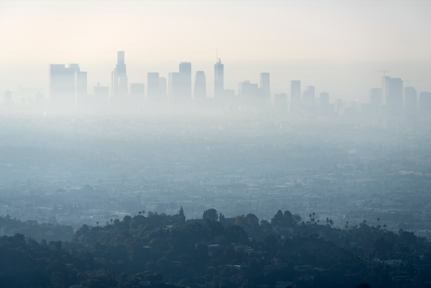 an arial view of downtown los angeles' skyscrapers, covered in haze and smog