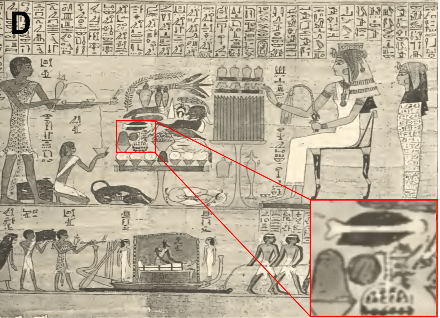 an egyptian painting with columns of hieroglyphics, multiple people standing and kneeling with a queen and sarcophogas. in the center is large table filled with food, including a round watermelon-like item, which the graphic has circled in red