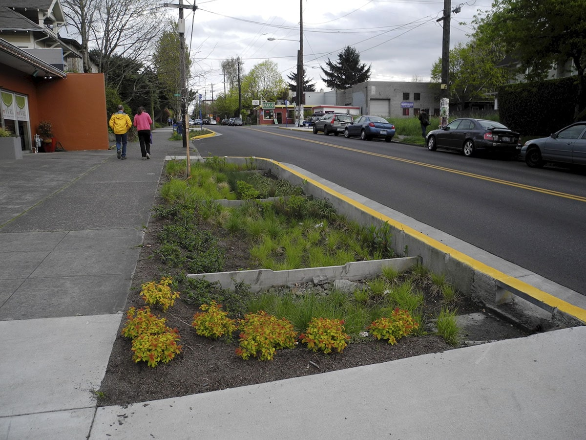 Bioswale on SE Division Street in Portland, Oregon