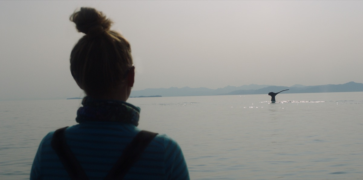 the back of a woman shadowed as she looks out across the ocean at a humpback whale's tale breaching the water
