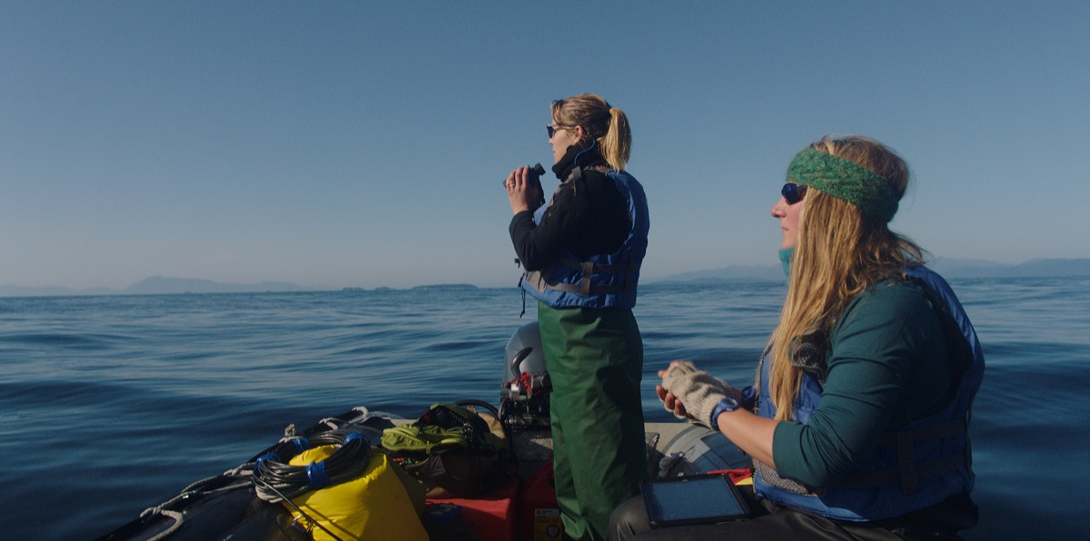 two women scientists on a boat holding binoculars looking out for whales on the sea