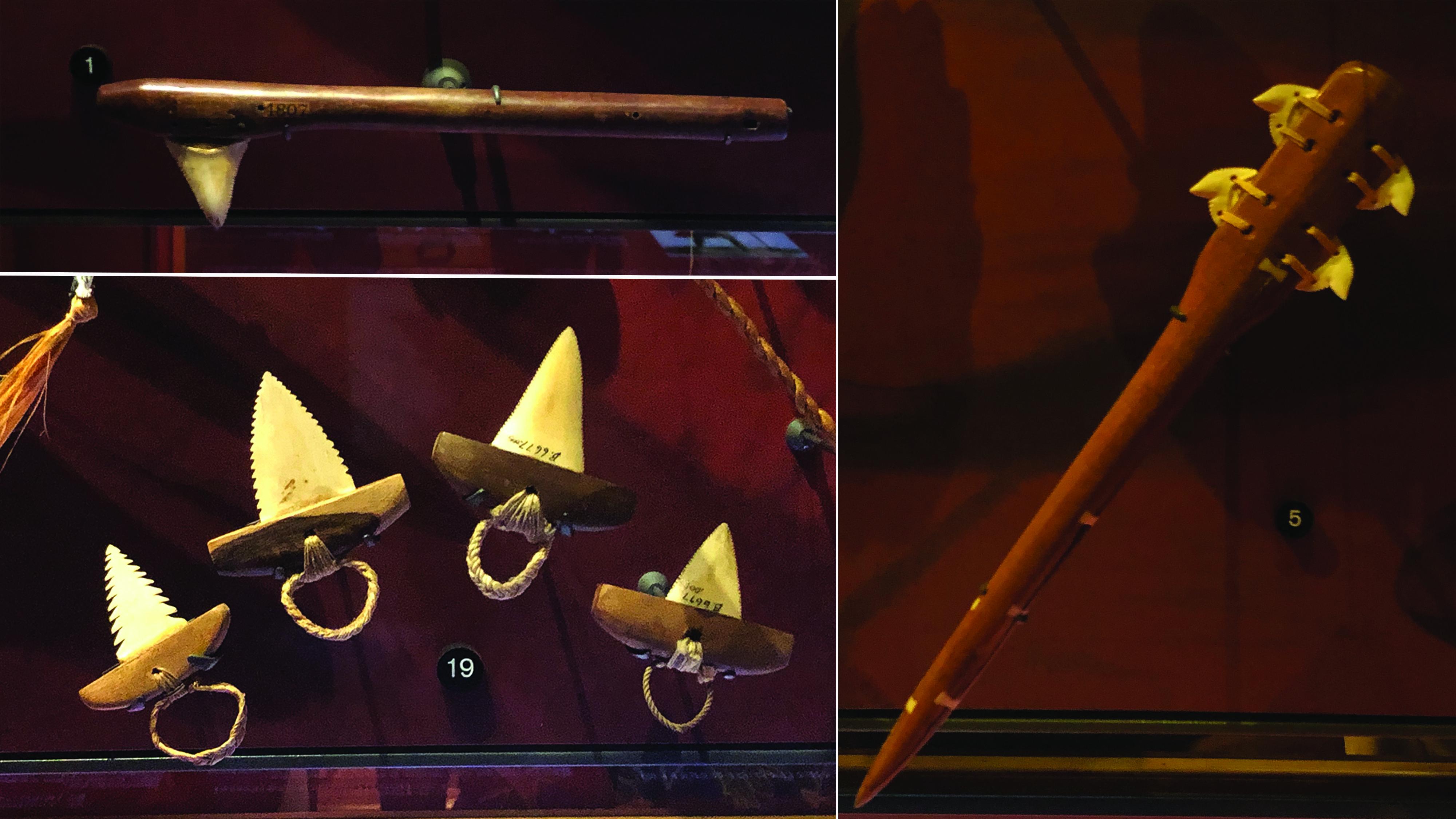 Three types of Hawaiian shark-toothed weapons