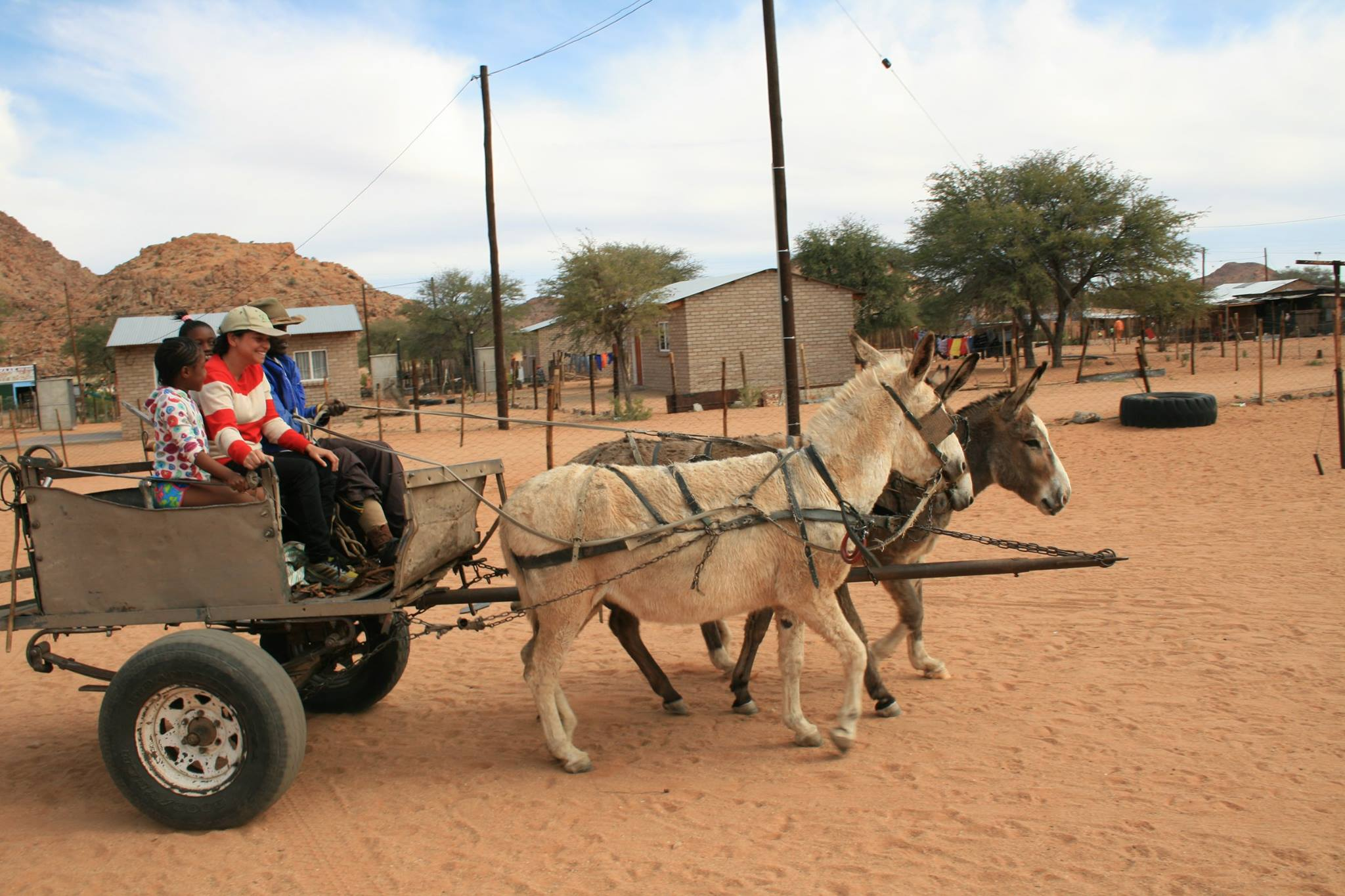 four people in a wagon pulled by donkeys in a dry, dusty town