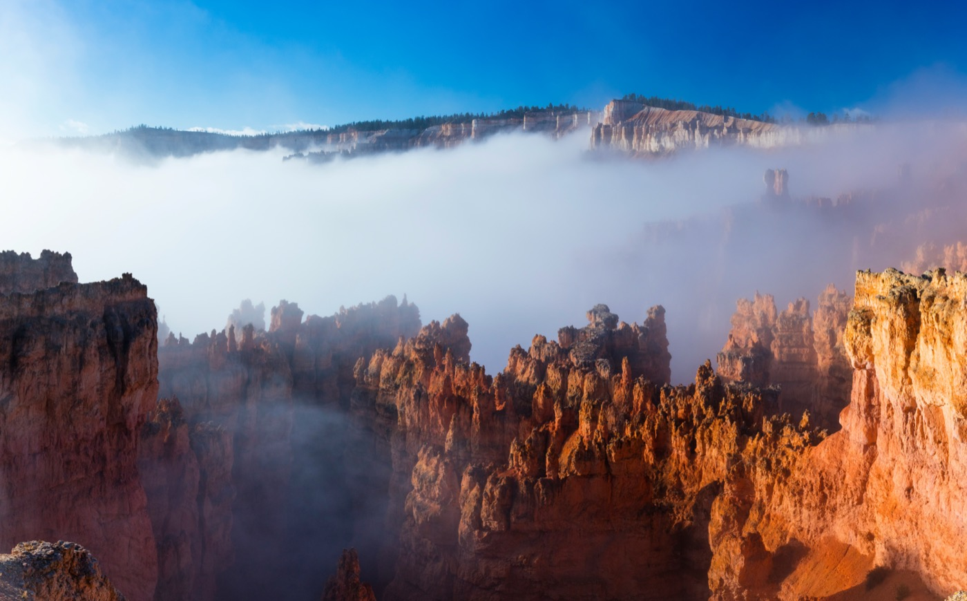 a layer of fog partially obscuring a majestic canyon