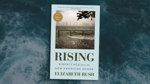 """a book cover reads """"Rising: Dispatches from the New American Shore"""" by Elizabeth Rush, with an image of a walkway overflowing with sea water and a city skyline faded into the background"""