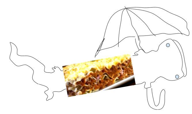 a line drawing of a salamander with a picture of lasagna over its body